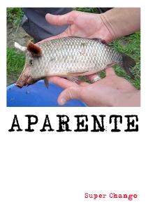 APARENTE-TAPA